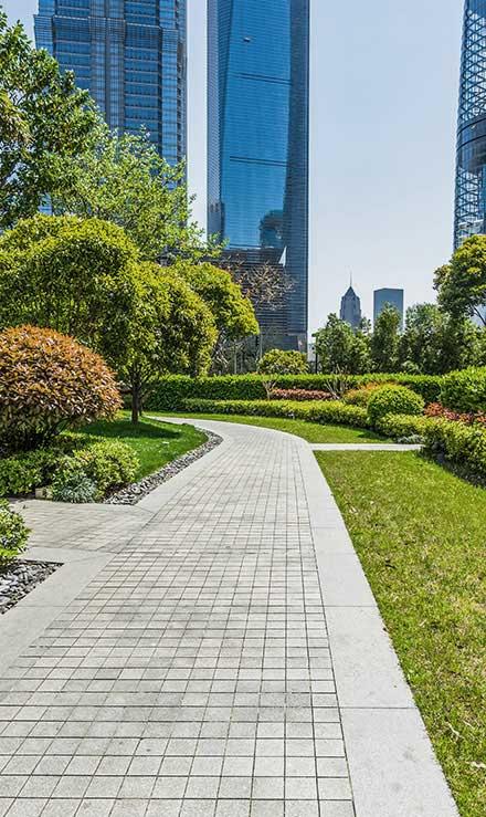 Sterling Lawn & Landscape Landscaping