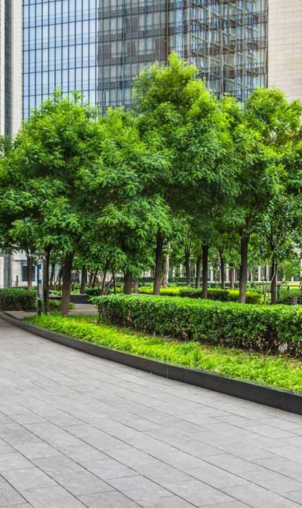 Sterling Lawn & Landscape Commercial Grounds Maintenance