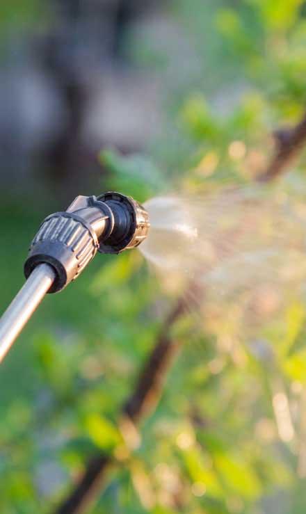 Sterling Lawn & Landscape Lawn Pest Control