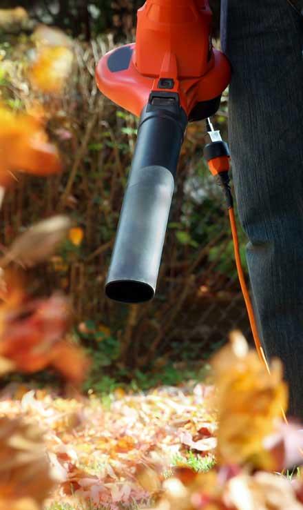 Sterling Lawn & Landscape Leaf Removal