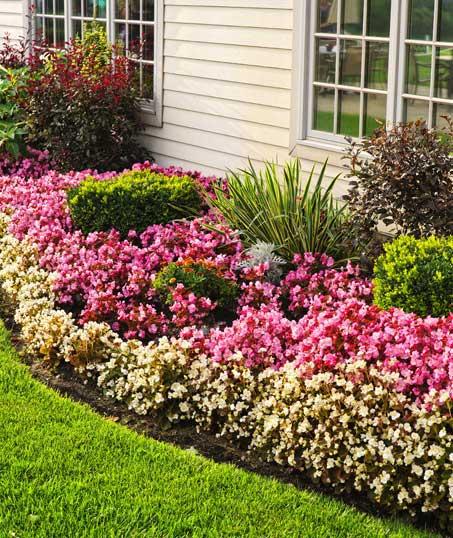 Sterling Lawn & Landscape Garden Design